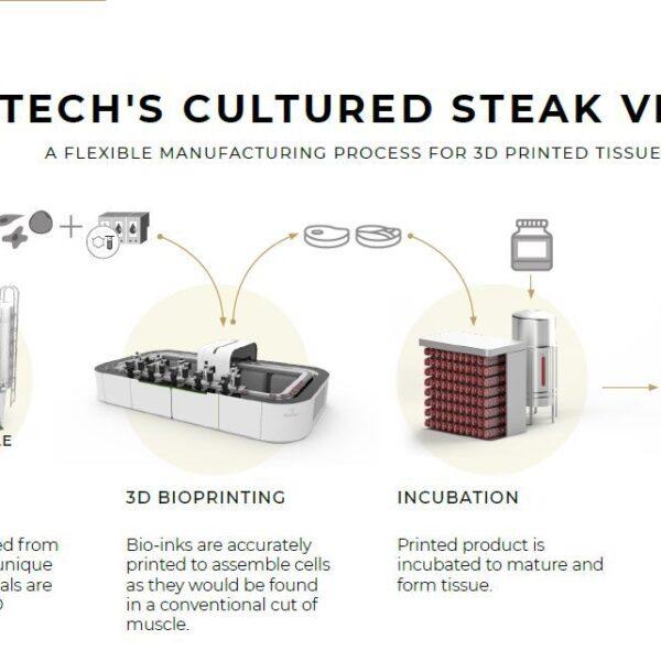 فرآیند تولید گوشت پرورشی با پرینتر سه بعدی زیستی