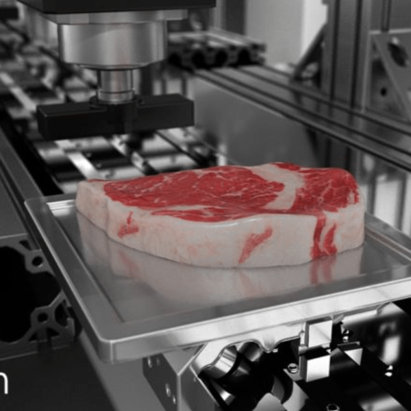 پرینتر سه بعدی زیستی گوشت
